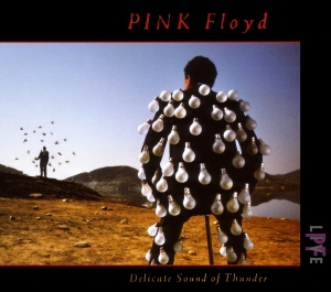 1988 - Delicate Sound Of Thunder (2 CD)
